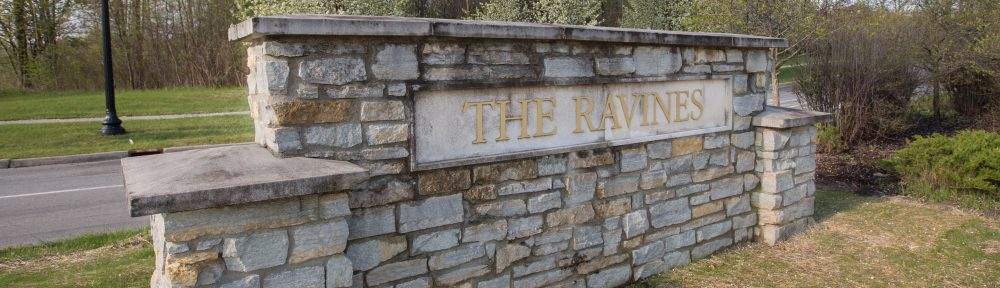 The Ravines North